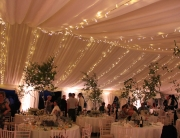 Fairy Light Canopy