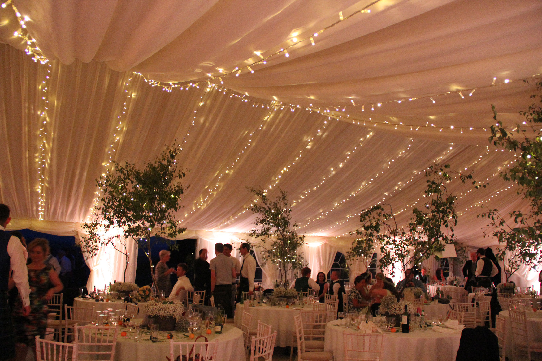 Fairy Light Canopy